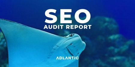seo audit and review